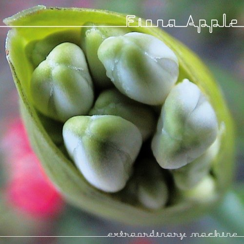 Fiona Apple - Extraordinary Machine (Bonus DVD)